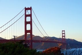 wonderful golden bridge