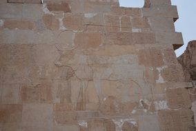 carved cow on the wall in luxor