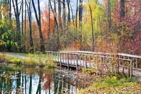 old wooden bridge on pond autumn season