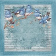 blue birds branch background