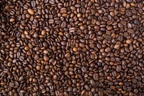 brown coffee beans texture