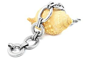 little gift jewelry bracelet with sea shell