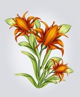 drawing of orange flowers