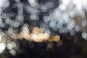 bokeh lights blurred background