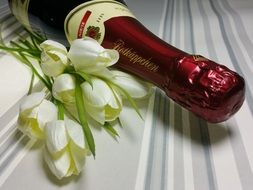 rotkäpptsen champagne and a bouquet of white tulips on Valentine's Day