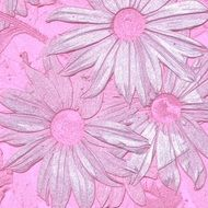 pink wallpaper with flowers