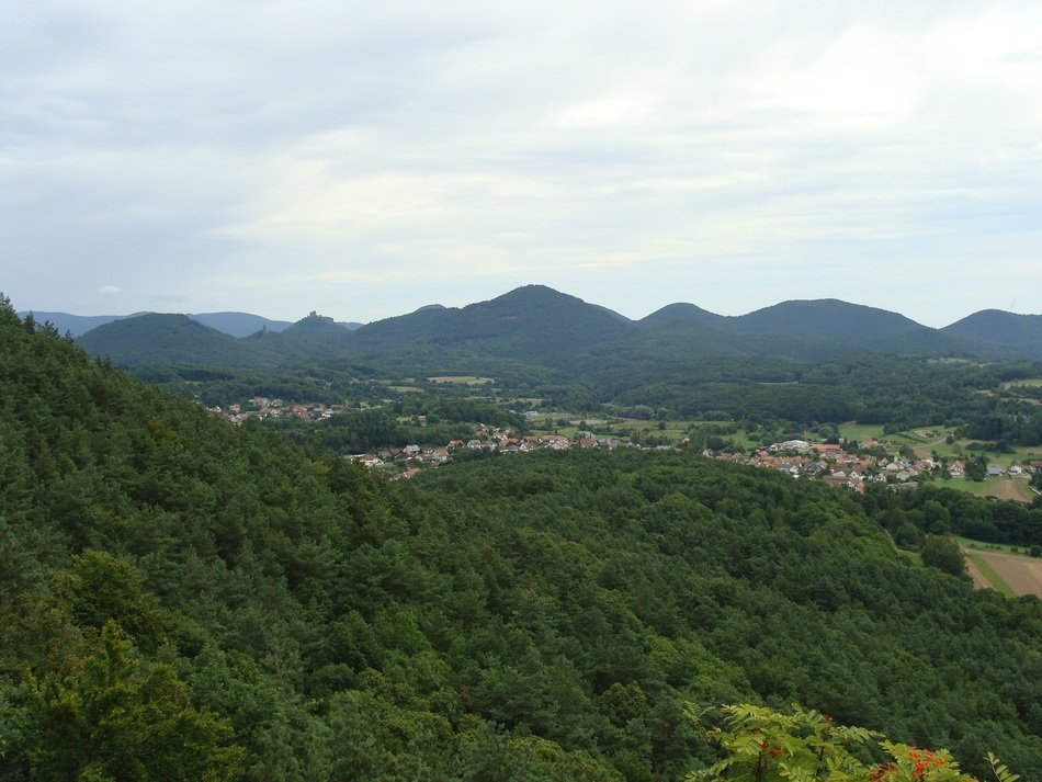 panorama of hills in the palatinate forest