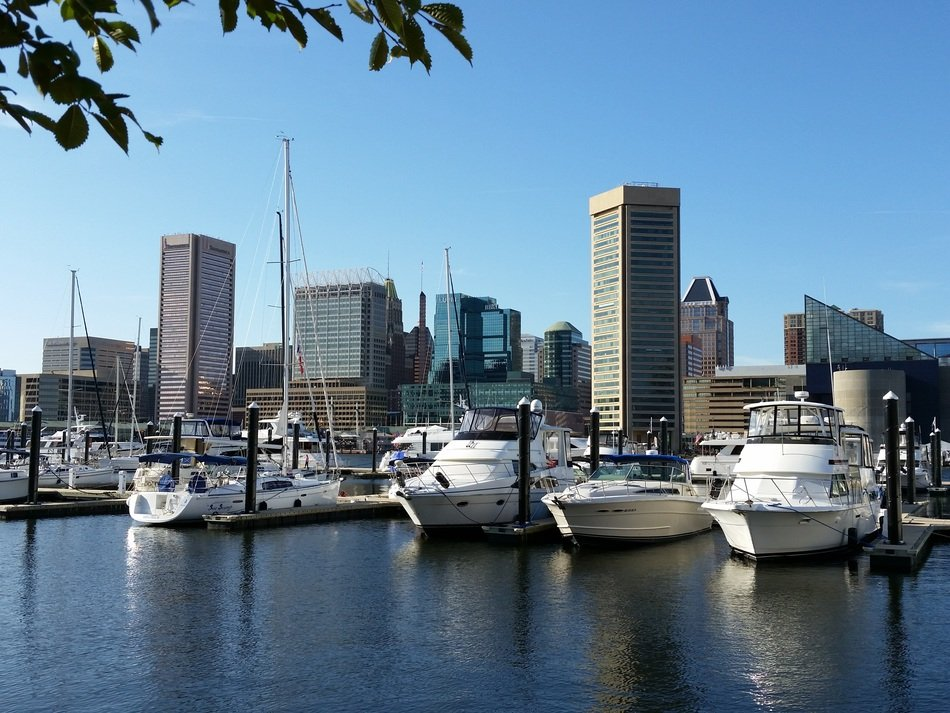 marina in the center of the city of Baltimore