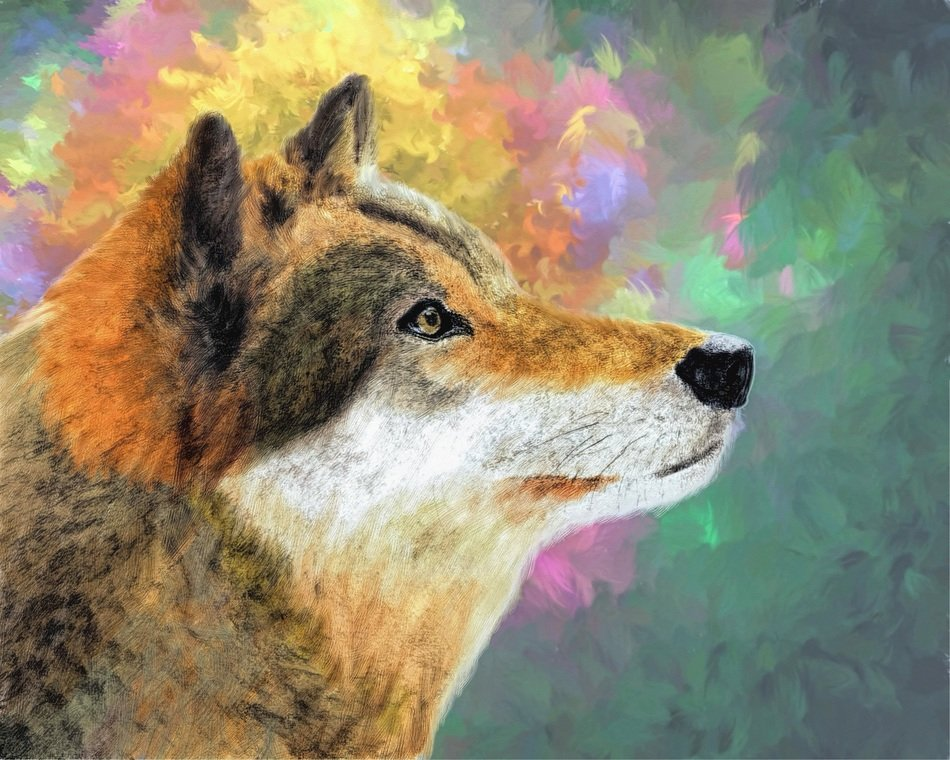 wolf digital art and painting