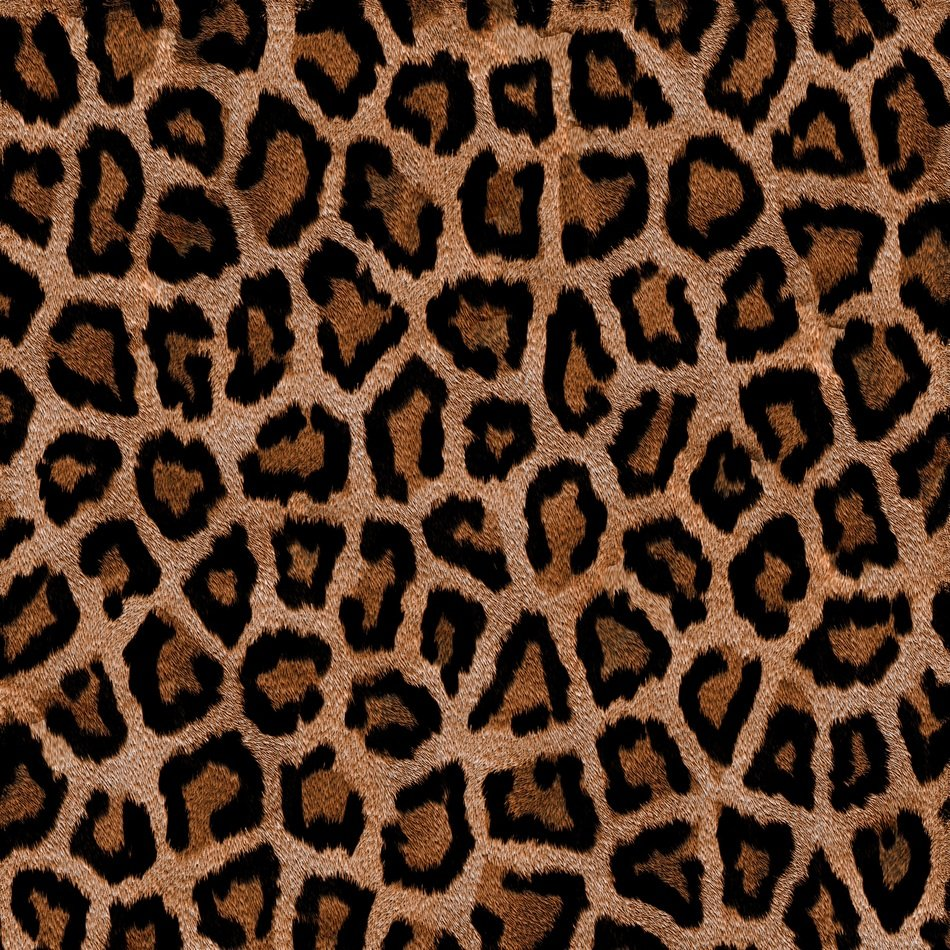 brown color leopard animal texture