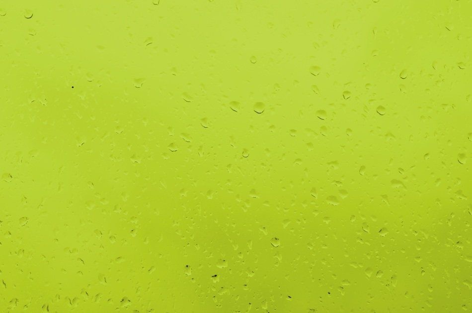 rain drops of water green color background