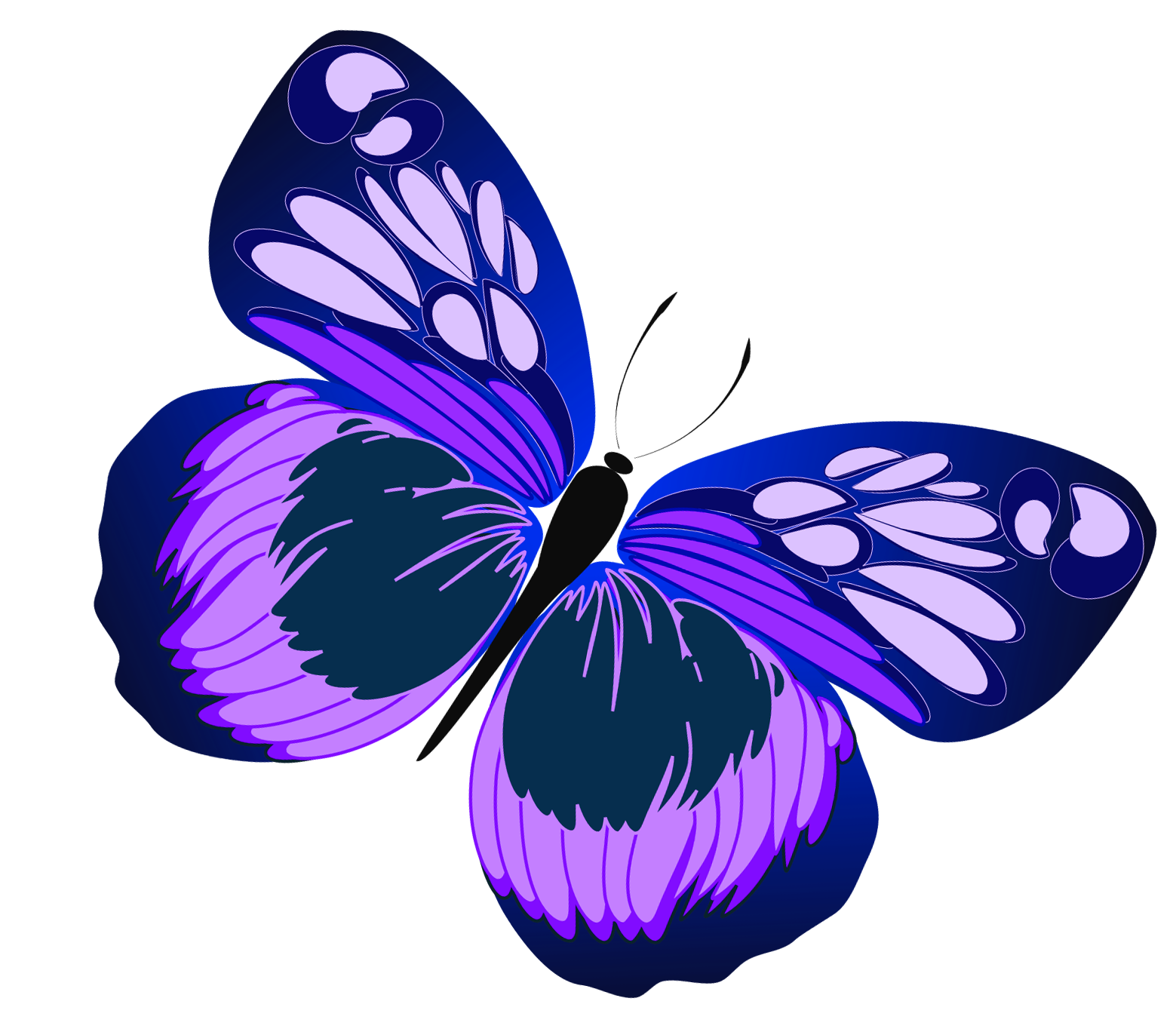 Butterfly Line Drawing Stock Images RoyaltyFree Images