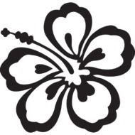 Black And White Hawaiian Flowers drawing