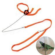 Bargain World Generic Adjustable Reptile Lizard Harness Leash Pet Leash