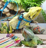 Bargain World Generic Adjustable Reptile Lizard Harness Leash Pet Leash N3