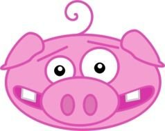 Cartoon Pig as a graphic illustration