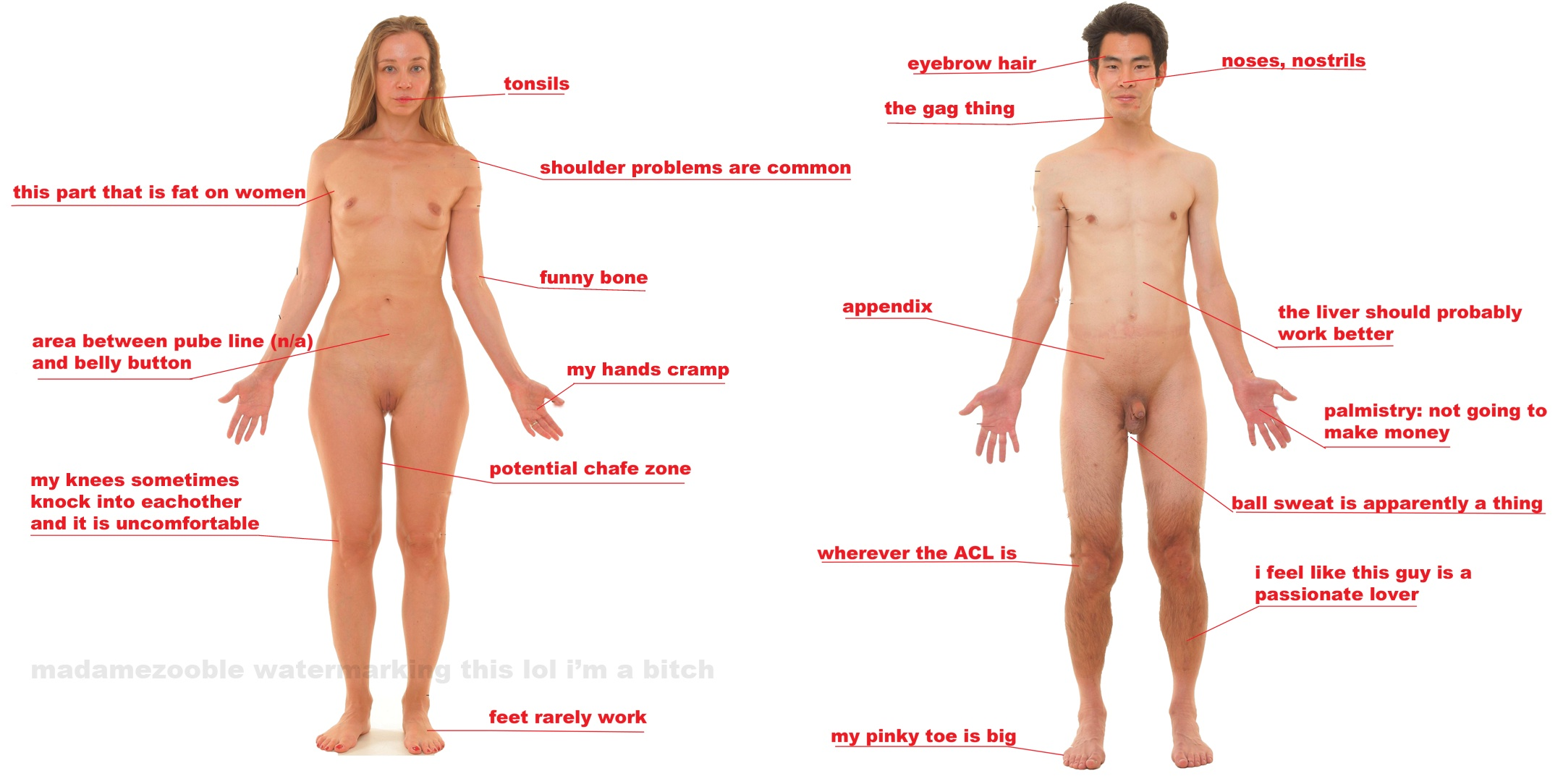 Your erogenous zones sexual health site