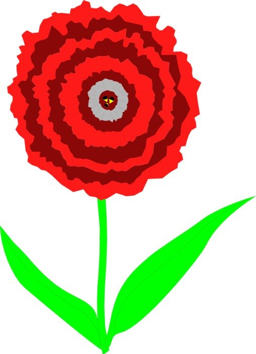 Carnation with the red petals clipart