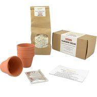 Flowerpot Bread Making Kit Christmas Xmas Holiday Present