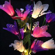 KAKA(TM) Amaryllis Flowers Led String Lights with Plug-in Light Decorate Vase Lantern Warm White Light 220V N2
