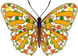 Orange And Yellow Butterflies drawing