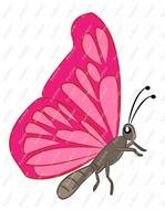 Beautiful pink butterfly clipart