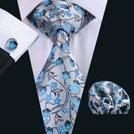 Dan Smatree Menโ€™s Silk Neckties Tie and Hanky and Cufflinks Sets N2