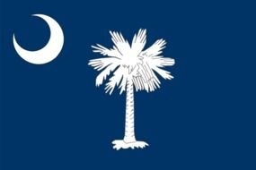 South Carolina State Flag as a graphic illustration