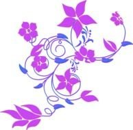 drawn purple curly flowers on a white background