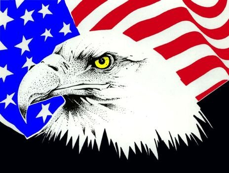 Eagle American Flag drawing