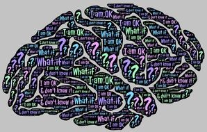 human brain full of questions