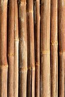 bamboo wood pattern template background