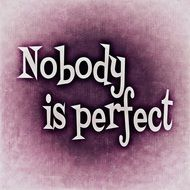 statement nobody is perfect saying