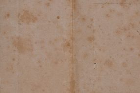 paper old texture antique