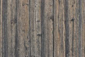wood texture background boards old