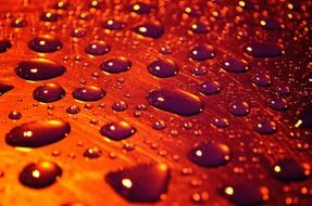 macro drops rain background