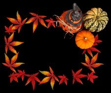 pumpkins and autumn leaves on a black background