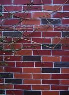 aesthetic brick wall