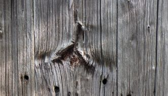wood plank board structure grain