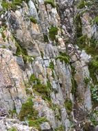 stone wall gray green cliff color