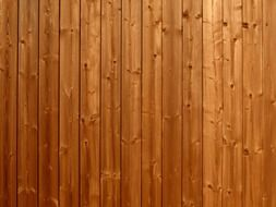 wooden boards surface texture