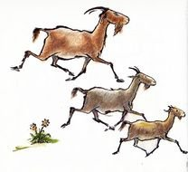 drawn running goats