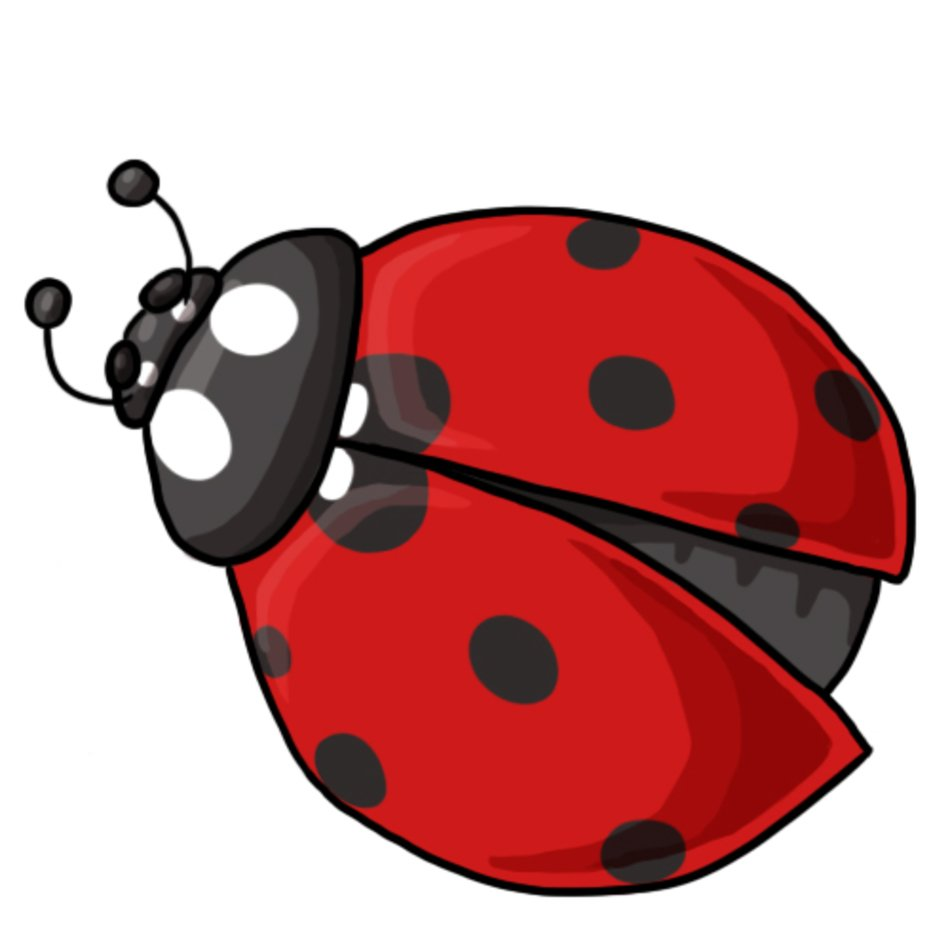 image regarding Printable Ladybug named No cost Printable Ladybug Clip Artwork N3 cost-free impression