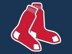 Boston Red Sox, symbol of sports team