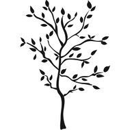 Tree Branch Wall Decals drawing
