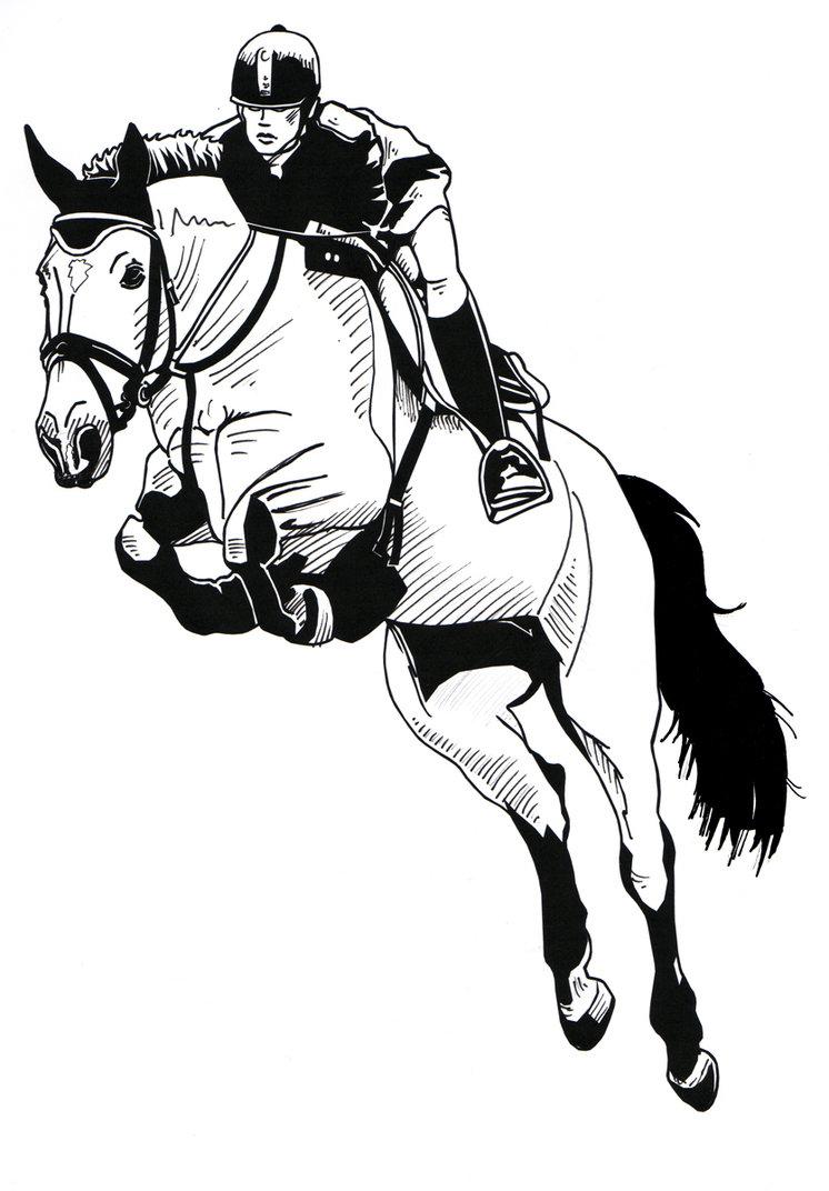 Horse Jumping Man Drawing Free Image