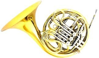 French Horn as a graphic illustration