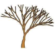 brown bare tree, drawing