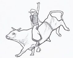 black and white drawing of a man on a bull