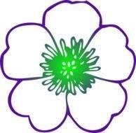 Purple Hibiscus Flower Clip Art Images At Pixyorg